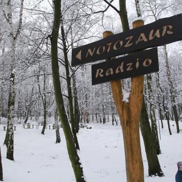 Księża Góra w Radzionkowie zimowo