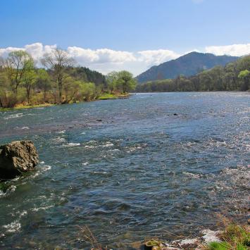 Dunajec w Krościenku na szlaku na Sokolicę, Anna Piernikarczyk
