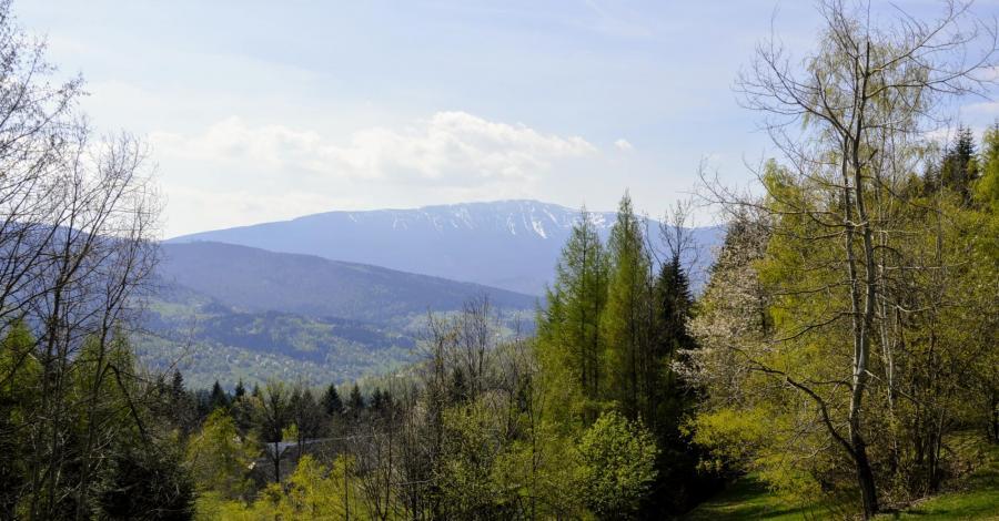 Do Schroniska Opaczne z Przełęczy Przysłop - zdjęcie