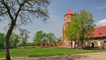 Zamek w Toszku i jezioro Dzierżno Duże - zdjęcie