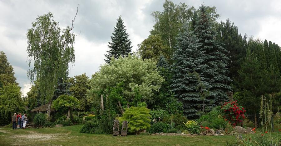 Świętokrzyskie: Ogród na Rozstajach - zdjęcie