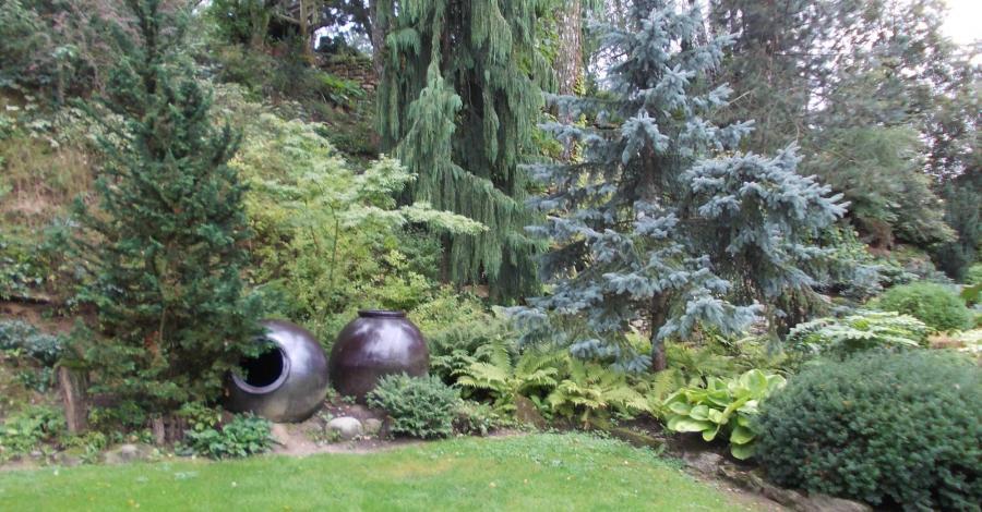 Przez Ogrody na Rozstajach do Buska Zdroju - zdjęcie
