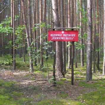 Sobibór i okolice