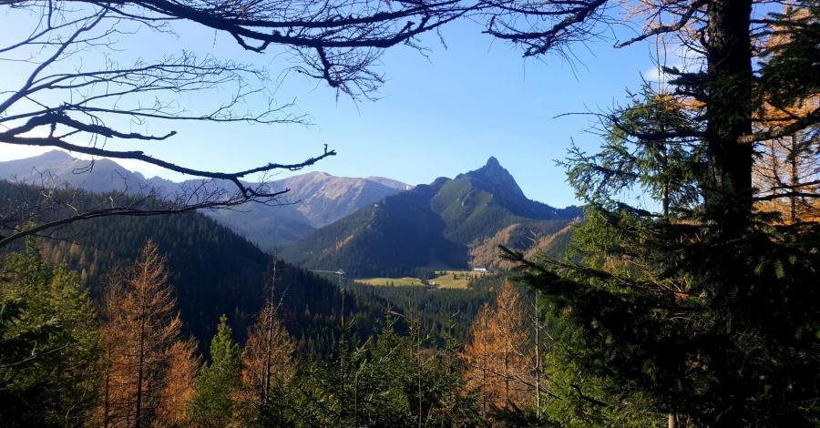 Dolina Lejowa, Nosal i Hala Gąsienicowa - zdjęcie