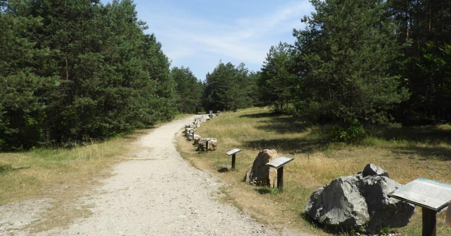 Podlesice – Jaskinia Głęboka i prawie Góra Zborów, Joanna