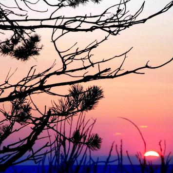 Samotnie na wolińskiej wyspie – II dzień – Międzywodzie – Lubin, Wapnica, Międzyzdroje