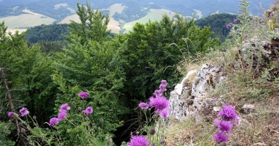Pienińsko-tatrzańska przygoda - zdjęcie