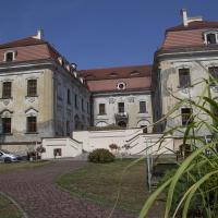 Sośnicowice pałac