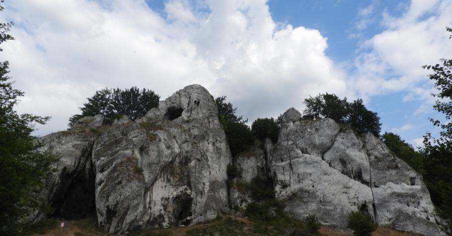 Skały Rzędkowickie i Góra Zborów na pożegnanie z Jurą - zdjęcie