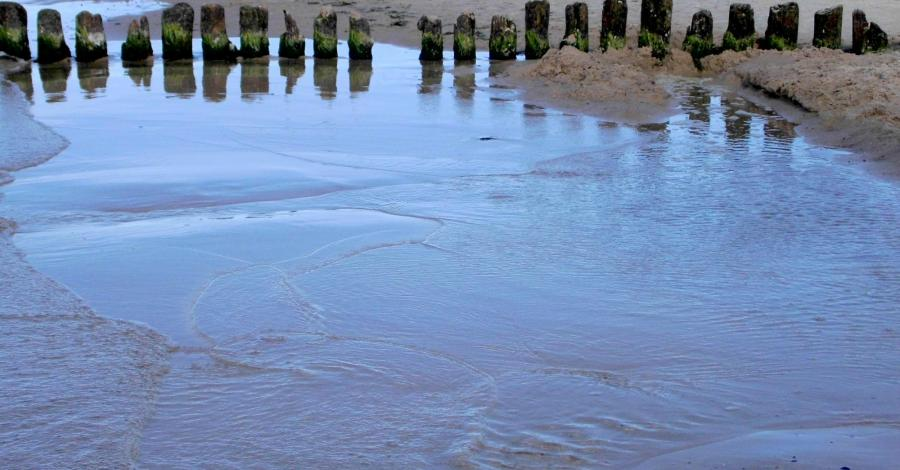 Samotnie na wolińskiej wyspie – VII dzień – powrót – Wisełka, Międzyzdroje - zdjęcie