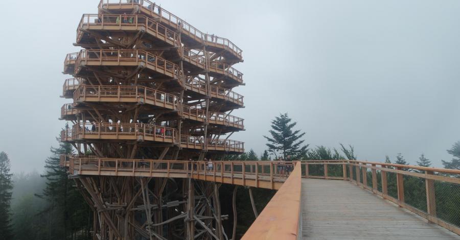 Krynica-Zdrój ; Wieża widokowa w koronach drzew ;Bardejów - zdjęcie
