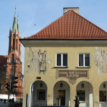 Białystok na kolorowo - murale i papugi