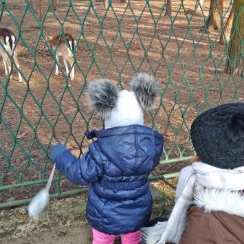 Radocha dla dzieci w sosnowieckim Parku Kuronia