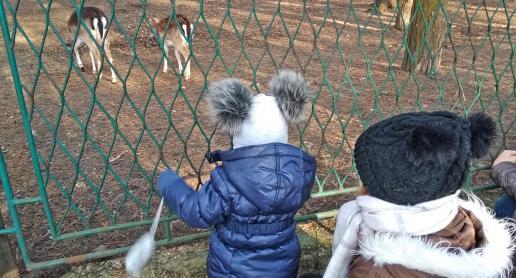 Atrakcyjnie dla dzieci w sosnowieckim Parku Kuronia - zdjęcie
