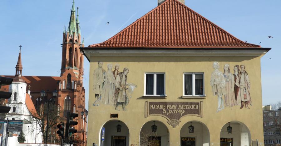 Białystok na kolorowo - murale i papugi - zdjęcie