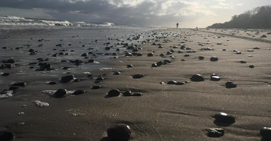 Weekend nad morzem, czyli Sarbinowo, Ustka, Słupsk i Mielno na majowo - zdjęcie
