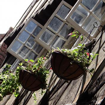 York, czyli śladami Rzymian i Wikingów  - zdjęcie