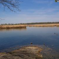 Rezerwat Łężczok