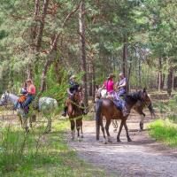 Konie na Jurze