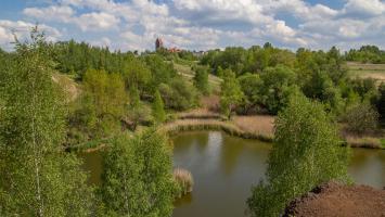 Spacer nad malowniczym Stawem Ajska w Świętochłowicach - zdjęcie