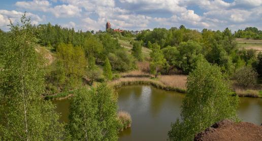 Szukasz pomysłu na atrakcyjny spacer na Śląsku? Mamy wspaniałą propozycję! - zdjęcie
