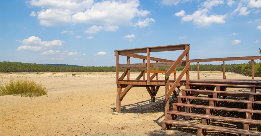 Rodzinny szturm na grodzisko Stary Olkusz i punkty widokowe Pustyni Błędowskiej - zdjęcie