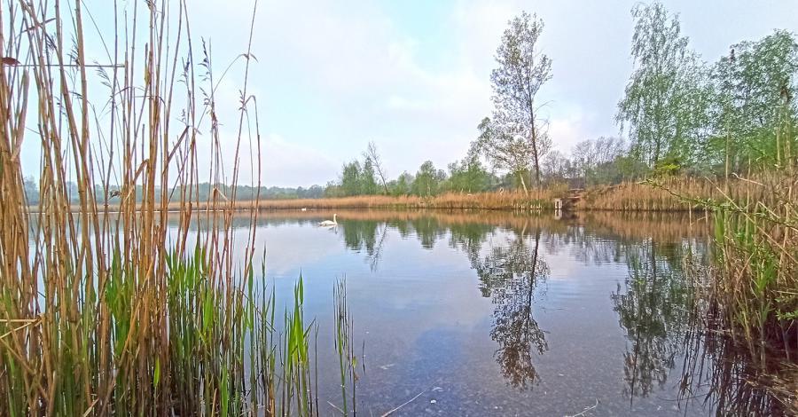Kto rano wstaje, temu ptaki śpiewają w Żabich Dołach - zdjęcie