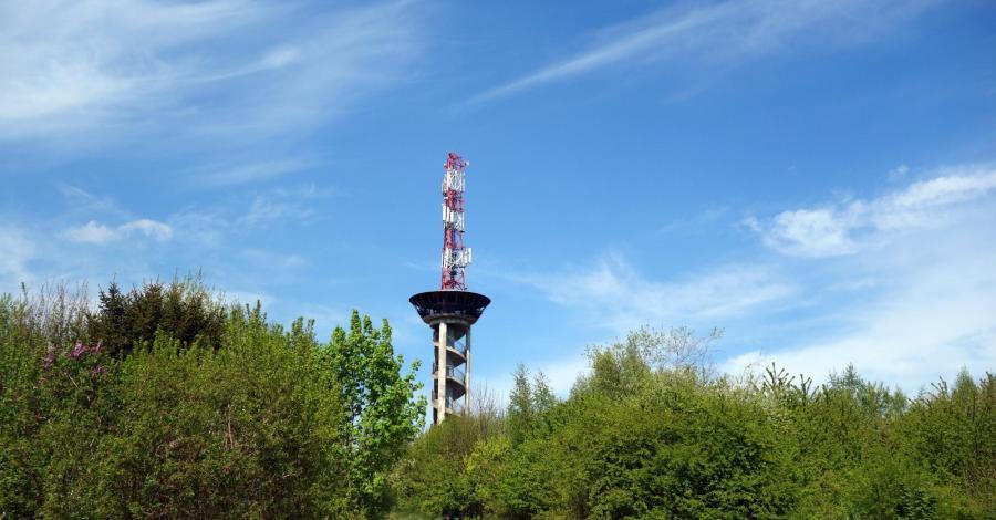 Na spacer do żeremi - Łęg nad Swelinią - zdjęcie