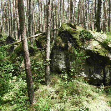 Wokół fortu IV Twierdzy Osowiec – na jagody i do wody
