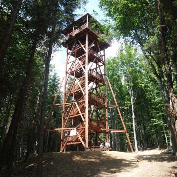 Beskid Niski ; Ferdel , rezerwat Kornuty