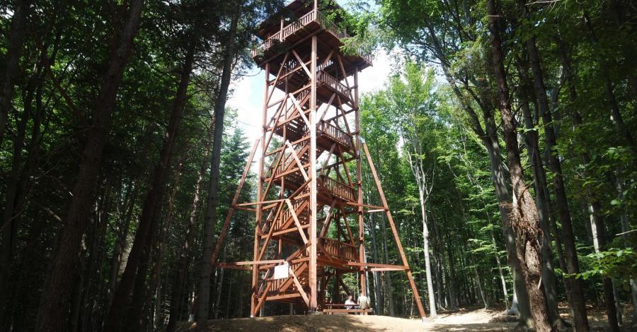 Beskid Niski ; Ferdel , rezerwat Kornuty - zdjęcie