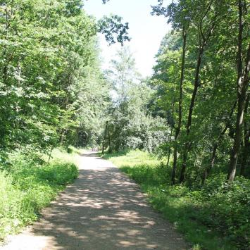 Arboretum Bramy Morawskiej w Raciborzu i Polska Cerekiew - zdjęcie