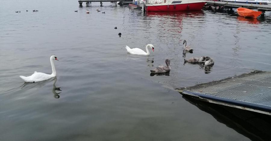 Sława- Jezioro Sławskie - zdjęcie