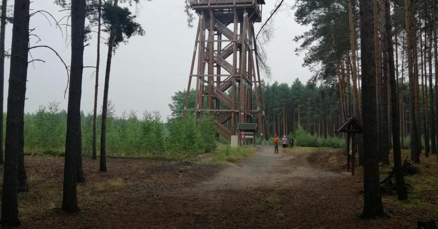 Polana rekreacyjna Świętobór- Wieża widokowa Joanna - zdjęcie