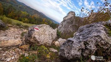 Jurajskie Szlaki Jesienne - Góra Zborów, Grzęda Mirowska i Kuesta Jurajska czyli horyzonty Jury