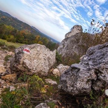 Horyzonty Jury na Jurajskich Szlakach Jesiennych