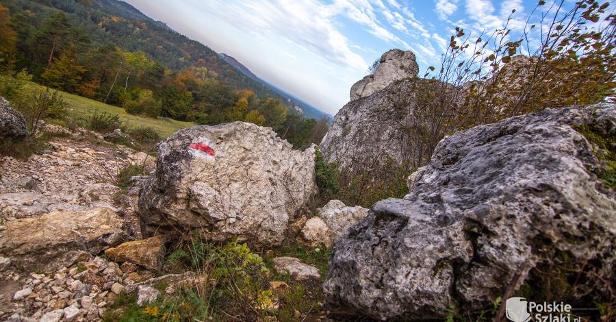 Jurajskie Szlaki Jesienne - Góra Zborów, Grzęda Mirowska i Kuesta Jurajska czyli horyzonty Jury - zdjęcie