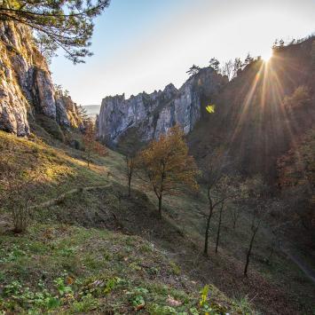 Bramą Jury czyli Krakowskimi Dolinkami zakończyliśmy nasze Jurajskie Szlaki Jesienne