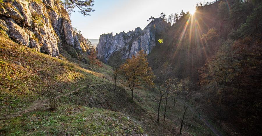 Jurajskie Szlaki Jesienne - Dolinki Krakowskie - Brama Jury, Dolina Bolechowicka i Kluczwody - zdjęcie