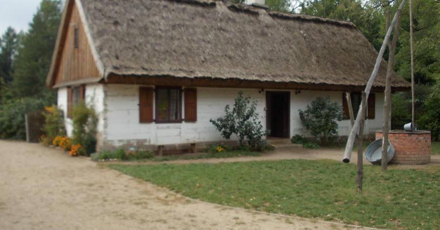 Ogród botaniczny w Łodzi: mini skansen, sad, labirynt grabowy - zdjęcie