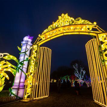 Ogród Świateł Alicja w Krainie Czarów i świąteczny Kraków - zdjęcie