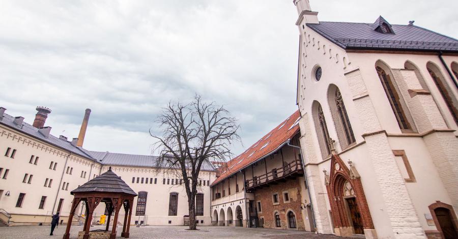 Władca regionu - Racibórz i inne atrakcje Ziemi Raciborskiej - zdjęcie