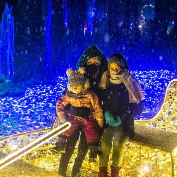 Magiczny Park Iluminacji na Zamku Topacz - zdjęcie