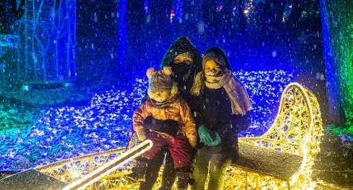 Magia w Parku Iluminacji na Zamku Topacz - zdjęcie