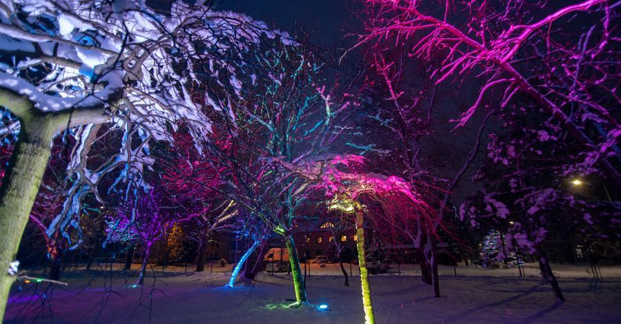 Park Światła w mysłowickim Parku Słupna - zdjęcie