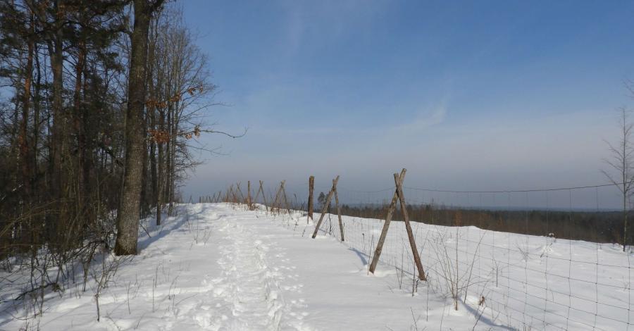 Wzgórza Świętojańskie zimą - zdjęcie