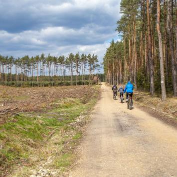 Leśno Rajza i Staw Gierzyna - rowerowa sobota - zdjęcie