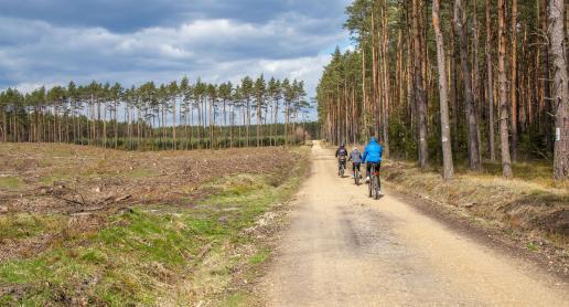 Leśną Rajzą nad Gierzynę czyli sobota na rowerach - zdjęcie