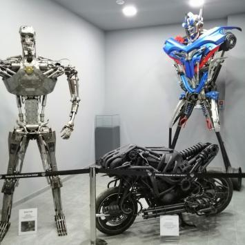 Zamek oraz Fabryka Robotów w Mosznej. - zdjęcie