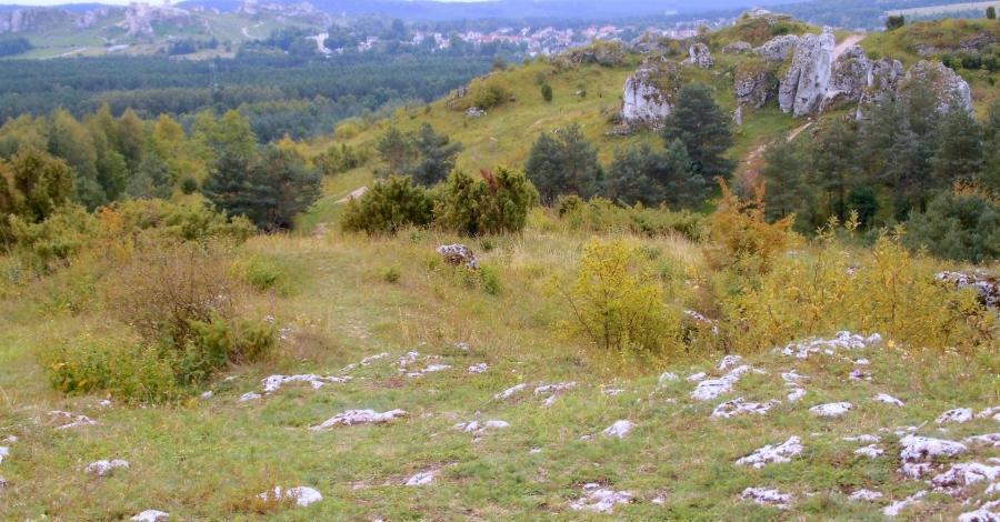 Malownicze Góry Towarne na Jurze k. Kusiąt - zdjęcie